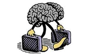 fuga_cerebro