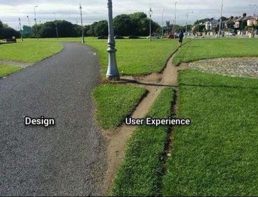 Design_User