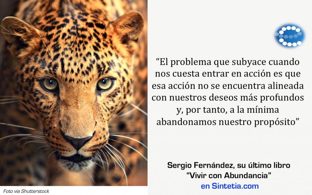 sergio_Fernandez_Sintetia