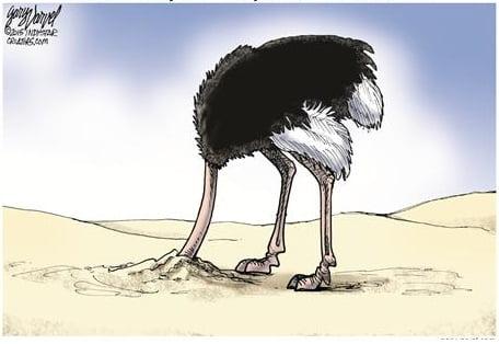 Debt avestruz
