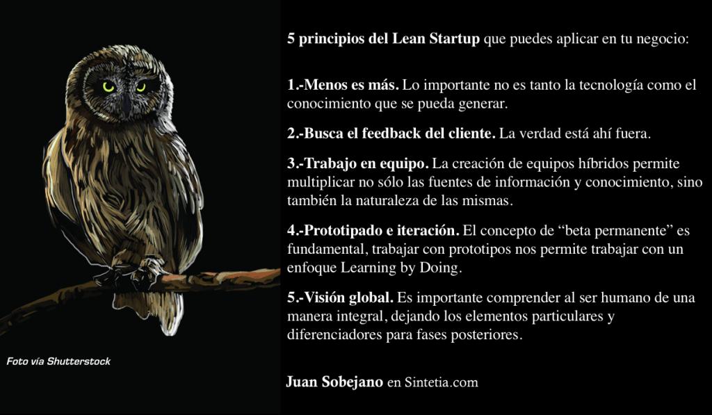 5 Principios Lean Startup