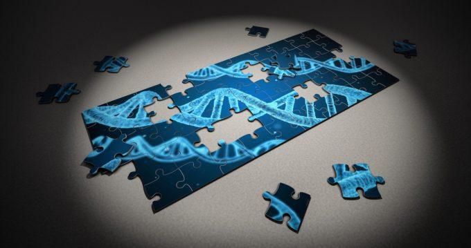 La genética de la tecnología y la economía